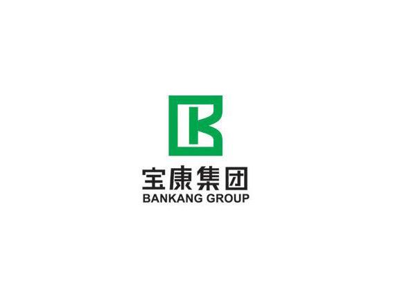 深圳市宝康集团公司LOGO设计欣赏